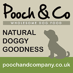 Pooch & Co Main Banner