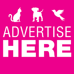 Advertise Here Ad 1