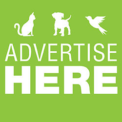 Advertise Here Ad 3
